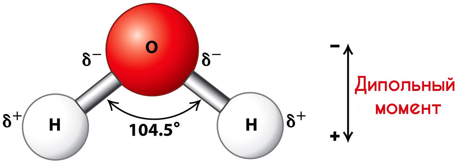 Дипольный момент молекулы воды